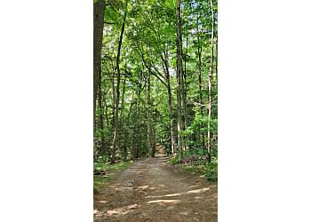 Stouffville hiking trail Hollidge Tract