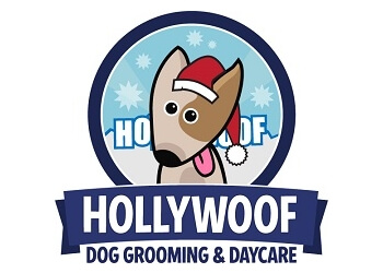 Vaughan pet grooming HollyWoof