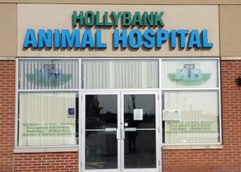 Milton veterinary clinic Hollybank Animal Hospital