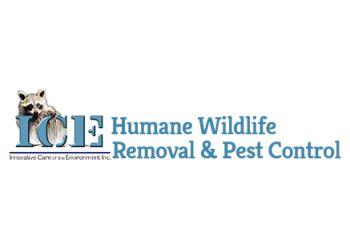 Halton Hills pest control ICE Pest Control