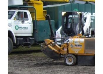 Cambridge tree service Ingold Tree Services Inc.