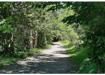 Jackson Park Trail