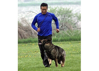 Stouffville dog trainer K9 Montessori