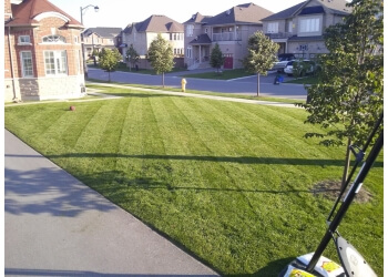 Newmarket lawn care service King Property Services