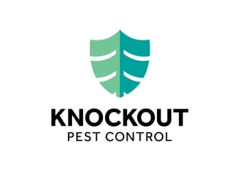Burnaby pest control Knockout Pest Control