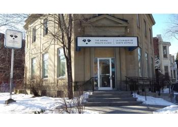 Montreal veterinary clinic LA Clinique De Sante Animale