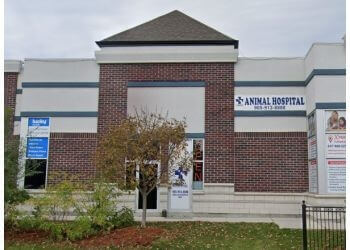 Brampton veterinary clinic Lacoste Animal Hospital