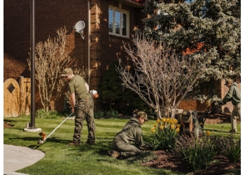 Brampton lawn care service Lawn Troopers
