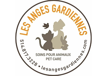 Montreal dog walker Les Anges Gardiennes