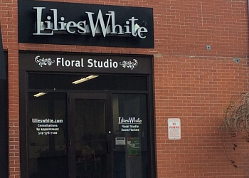Kitchener florist Lilies White