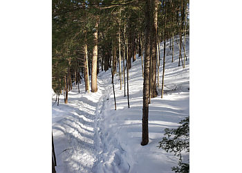 Huntsville hiking trail Limberlost Forest & Wildlife Reserve