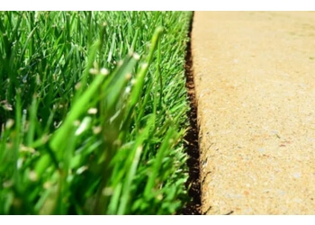 Halton Hills lawn care service Lion lawn cuts