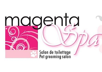 Laval pet grooming  Magenta spa
