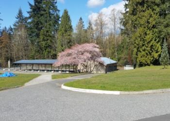 North Vancouver public park Mahon Park