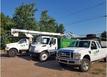 Moncton tree service Martel Tree Service