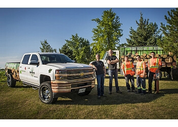 Waterloo tree service Martin's Tree Service Inc.