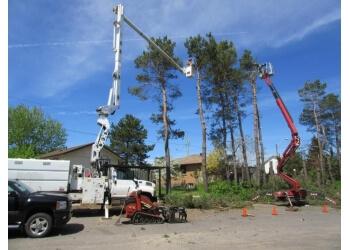 Thunder Bay tree service Master Tree Care