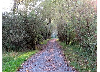 Matsqui Trail Regional Park Abbotsford Public Parks