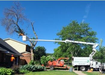 Burlington tree service McFarlan Tree Care Inc.
