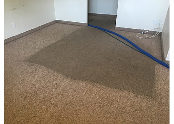 3 Best Carpet Cleaning In Regina Sk Expert Recommendations
