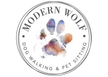 Edmonton dog walker Modern Wolf