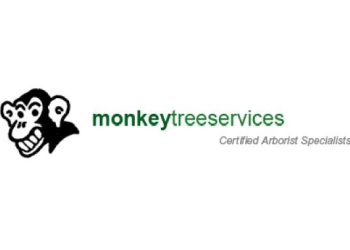 Vancouver tree service Monkey Tree Services