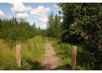 Prince George public park Moore's Meadow Park
