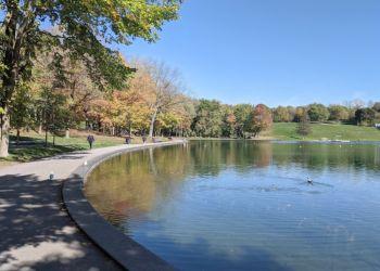 Montreal public park Mount Royal Park
