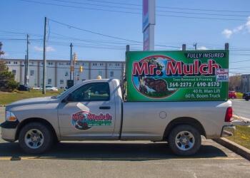St Johns tree service Mr. Mulch