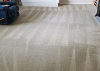 Nanaimo carpet cleaning Lee's Carpet Cleaning