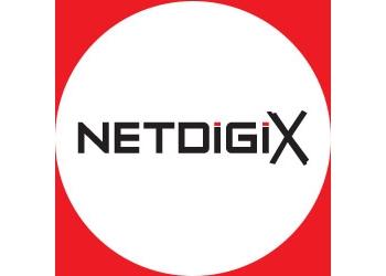 Burnaby it service NETDIGIX SYSTEMS INC.