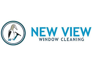 Toronto window cleaner New View Window Cleaning Ltd.