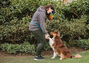 Vancouver dog walker Noelle's Pet Love
