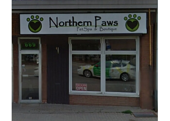Northern Paws Pet Spa