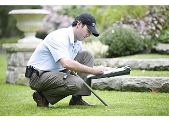 3 Best Lawn Care Services In Ottawa On Expert