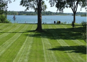 Sault Ste Marie lawn care service Nutri-Lawn