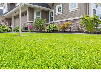 Gatineau lawn care service Nutrite Aol