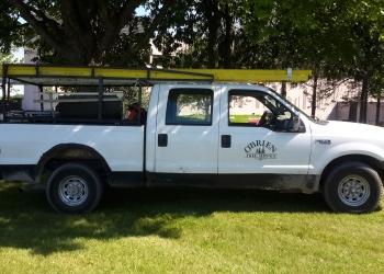 Belleville tree service O'Brien Tree Service