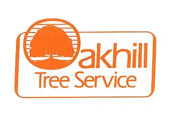 Brantford tree service Oak Hill Tree Service Ltd.
