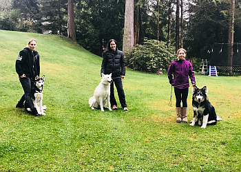 Maple Ridge dog trainer Obedience Unleashed Dog Training