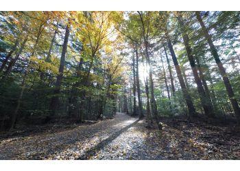 Fredericton public park Odell Park