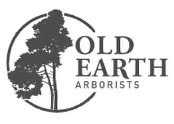 St Johns tree service Old Earth Arborists