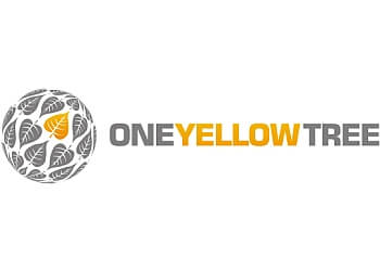 Chilliwack web designer One Yellow Tree