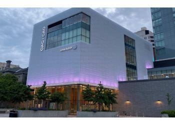Ottawa art gallery Ottawa Art Gallery