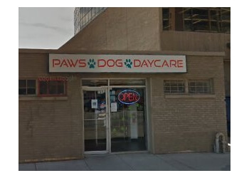 Dog Grooming Calgary Cost