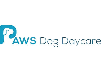 Calgary dog trainer PAWS Dog Daycare