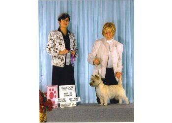 Oshawa dog trainer PAWS-ITIVE PUPPIES