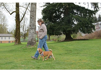 Coquitlam dog trainer PAWsitive Canine Coaching