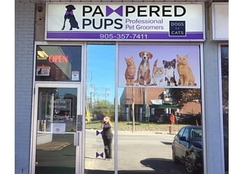 Niagara Falls pet grooming Pampered Pups