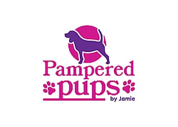 Kingston pet grooming Pampered Pups by Jamie